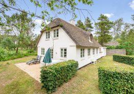 Echte Ferienhaus-Idylle direkt am Wald- und Heidestück. Kat. nr.:  30075, Ndr. Skovvej 20;