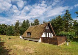 Charmerende stråtækt feriehus med sauna på idyllisk naturgrund (billede 1)