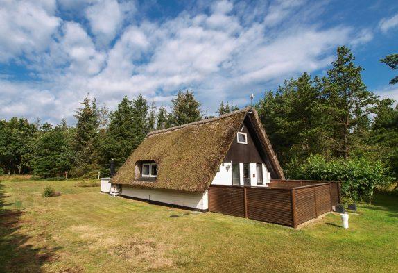 Charmantes Reetdachhaus mit Sauna auf idyllischem Naturgrundstück