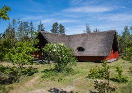 Idyllisches Reetdachhaus mit Sauna auf herrlichem Naturgrundstück