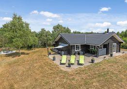 Helles und modernes Ferienhaus mit Whirlpool und Sauna (Bild 1)