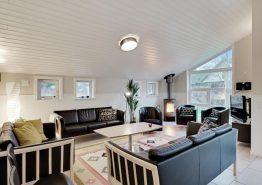 Schönes Luxussommerhaus in guter Lage mit grossem Aktivitätsraum (Bild 3)