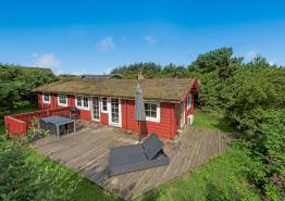 Gemütliches Holzferienhaus für 6 Personen auf ungestörtem Dünengrundstück