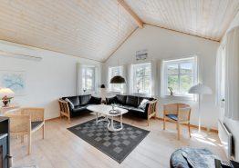Grosses tolles Ferienhaus mit Whirlpool und Sauna auf schönem Dünengrundstück (Bild 3)