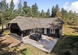 Charmerende træsommerhus i Blåvands flotte natur. Kat. nr.:  60079, Møllehusvej 66