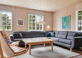 Charmerende stråtagshus i Blåvand med spa, sauna og stor have (billede 3)