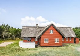 Charmerende stråtagshus i Blåvand med spa, sauna og stor have (billede 1)