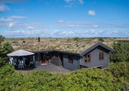 Charmerende feriehus med smuk udsigt til fyrtårnet i Blåvand (billede 1)