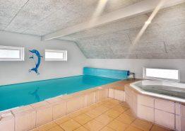 Stort poolhus med spabad og sauna til 10 personer og 1 hund (billede 3)