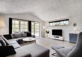 Stort luksussommerhus i Ho med sauna, spabad og aktivitetsrum (billede 3)