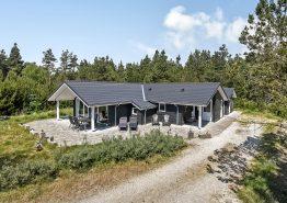 Lyst og indbydende feriehus med sauna og ugeneret beliggenhed (billede 1)