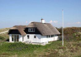 Nichtraucherhaus mit toller Terrasse in schöner Natur. Kat. nr.:  C3595, Sommervej 22;