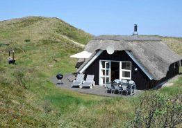 Ferienhaus mit gr. Terrasse auf ungestörtem Dünengrund