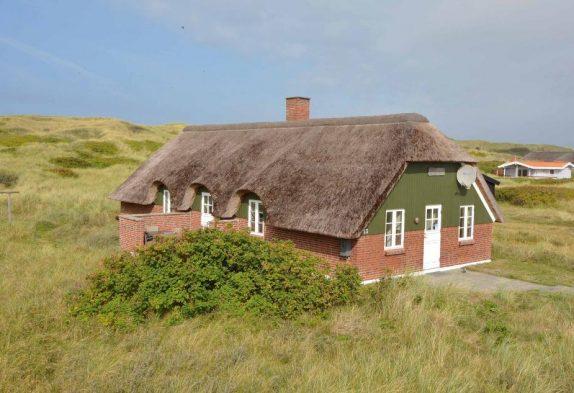 Ferienhaus mit Reetdach auf schönem Naturgrundstück