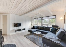 Fint sommerhus i Haurvig med skøn lukket terrasse. (billede 3)