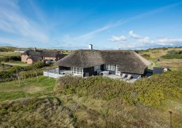 Ferienhaus mit Reetdach nah am Meer ? 2 Hunde erlaubt (Bild 1)