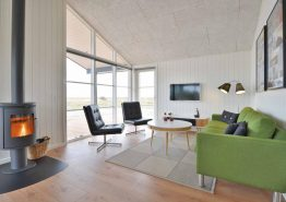 Schön eingerichtetes Ferienhaus am Ringkøbing Fjord (Bild 3)