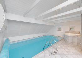 Moderne poolhus med spa, sauna, volleyball og 2 hunde tilladt (billede 3)