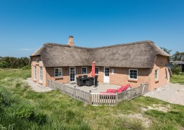 Haus mit Reetdach und geschl. Terrasse ? 1 Hund erlaubt (Bild 1)