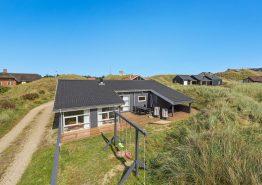 Schönes Luxusferienhaus mit großer Terrasse & Hund erl. (Bild 1)
