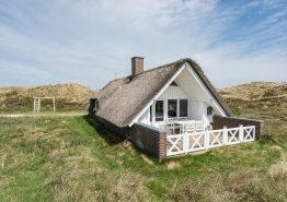 Ferienhaus mit Reetdach in Dünenlandschaft, 1 Hund erl.