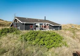 Ferienhaus mit schöner Terrasse und Blick zu den Dünen