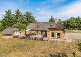 Reetdachhaus in Vester Husby /Fjand mit Sauna, Whirlpool und großem Garten (Bild 1)