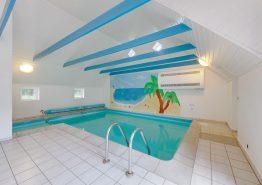 Skønt poolhus med sauna, spabad og volleyballbane (billede 3)