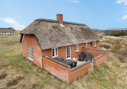Ferienhaus mit Reetdach in Strandnähe, Sauna und Whirlpool (Bild 1)