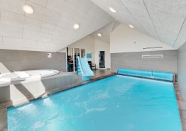 Grosses Poolhaus in Søndervig mit Aktivitätsraum und gratis Strom (Bild 2)